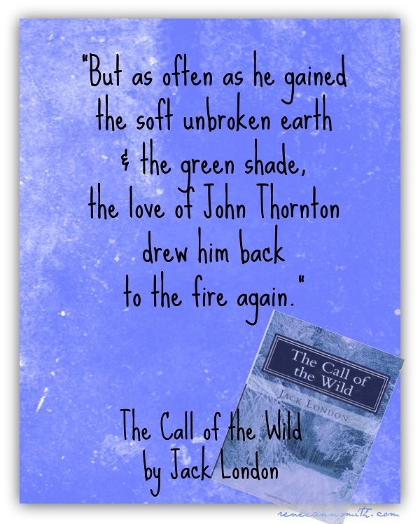 Book Report Of Call Of The Wild